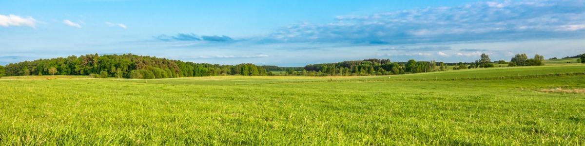 Grassland Nutrition