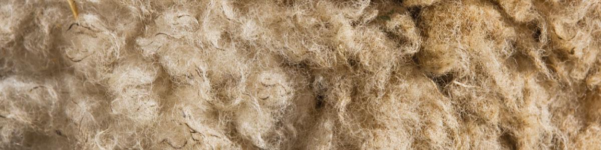 Wool Week 2020