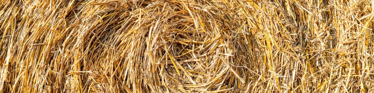 Advantages of Baled Grass Silage within Livestock Feeding Systems