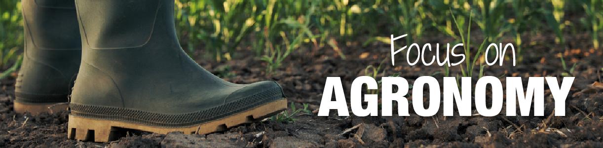 Agronomy Blog | Wynnstay Agrihub