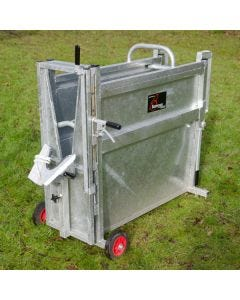 Heavy Duty Dehorning Crate