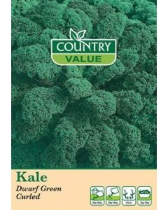 Country Value Kale Dwarf Green Curled