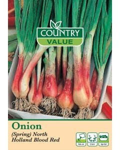 Country Value Onion (Spring) North Holland Blood Red