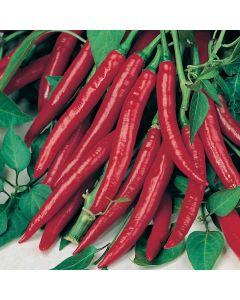 Country Value Pepper (Hot) De Cayenne