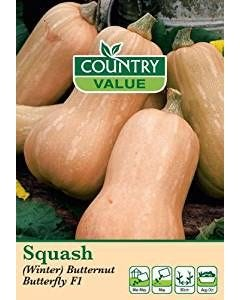 Country Value Squash (Winter) Butternut Butterfly F1
