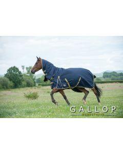 Gallop Trojan 100gm Turnout Rug