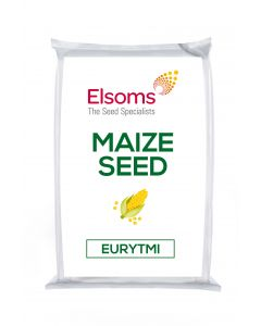 Eurytmi CS Maize Seed