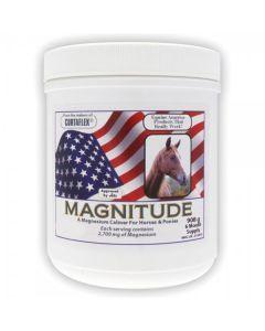 Equine America Magnitude