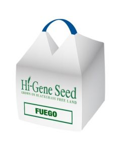 Fuego Spring Beans Seed
