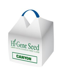 Canyon Spring Oats Seed