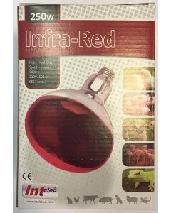 Infrared Bulb Ruby 250W