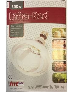 Infrared Bulb Frosted 250W