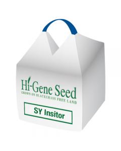 SY Insitor Winter Wheat