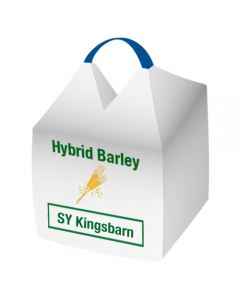 SY Kingsbarn Winter Hybrid Barley Seed