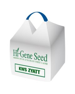 KWS Zyatt Winter Wheat Seed