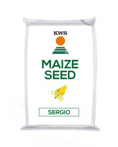 Sergio Maize Seed