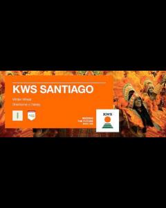 KWS Santiago Winter Wheat Seed - Group 4