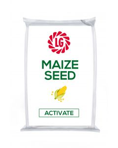 Activate Maize Seed