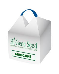 Mascani Winter Oat Seed