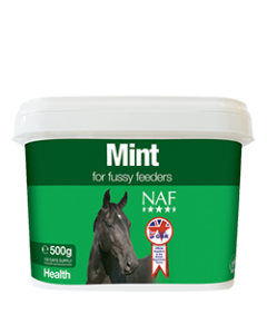 NAF Mint 500gm