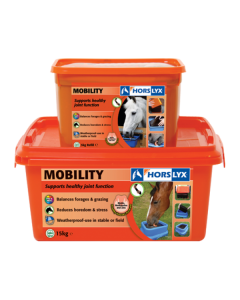 Horslyx Mobility Stable Lick 5KG