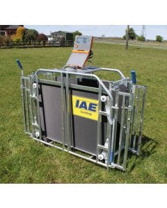 IAE Scanweigh Digital Lamb Weigher