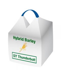 SY Thunderbolt Hybrid Barley Seed