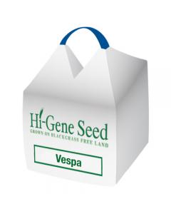 Vespa Winter Bean