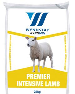 WynnminPremier Intensive Lamb