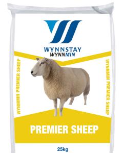Premier Sheep