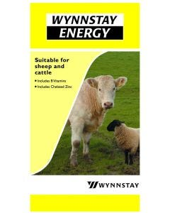 Wynnstay Energy Block 25kg