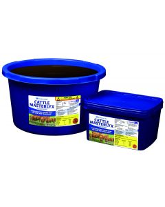 Cattle Masterlyx Forage Booster 20kg
