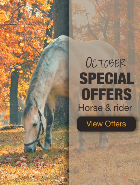 October Equine Offers